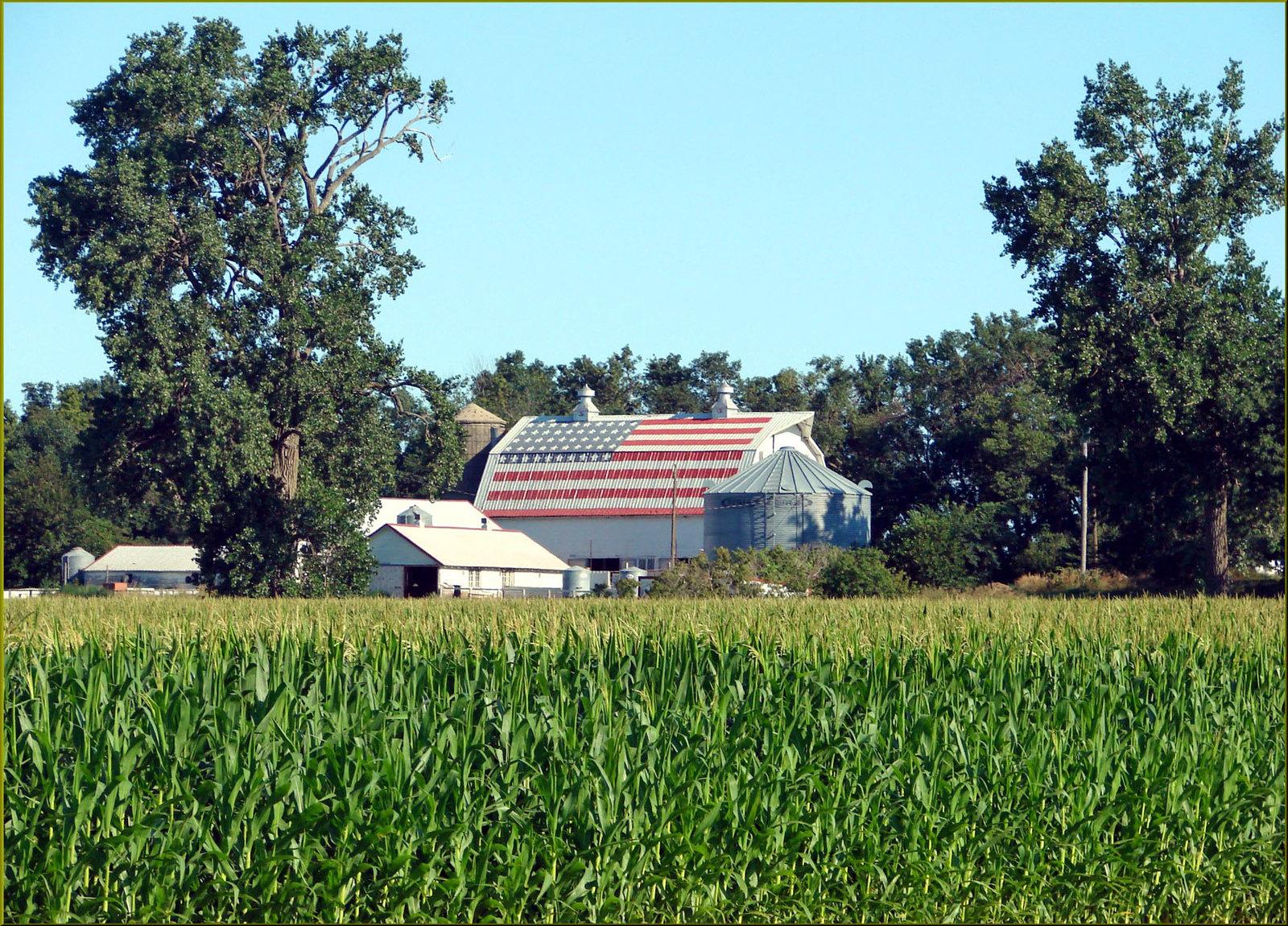 Photo of American farm