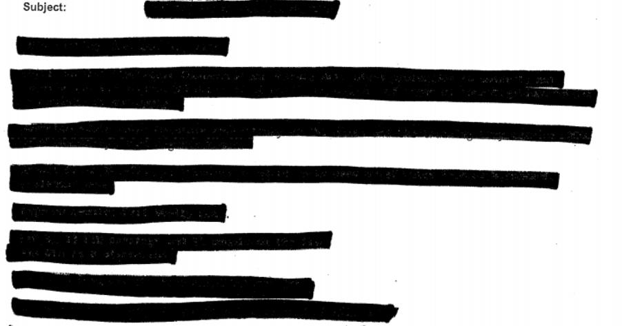 Screenshot of redacted document
